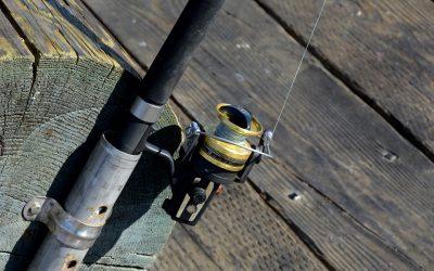 Los 5 mejores carretes de Pesca de 2019 🐟